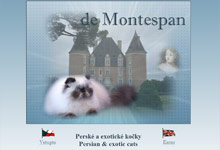 de Montespan - perské kočky colorpoint / persian and exotic colourpoint cats